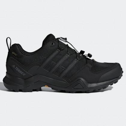 Adidas terrex swift r2 gtx shoes