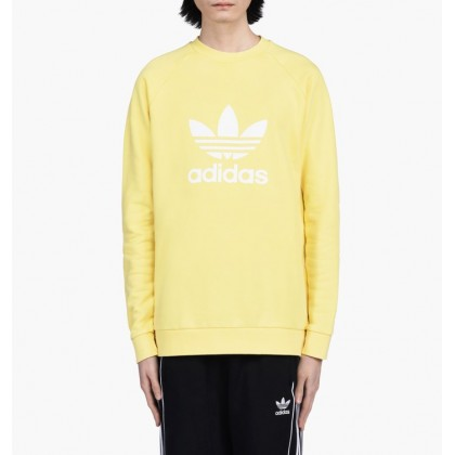 Adidas trefoil warm up